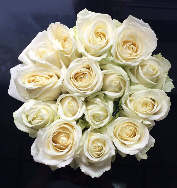 White golden rose